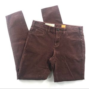 Pilcro Serif Fit Skinny Corduroy Pants Brown 28